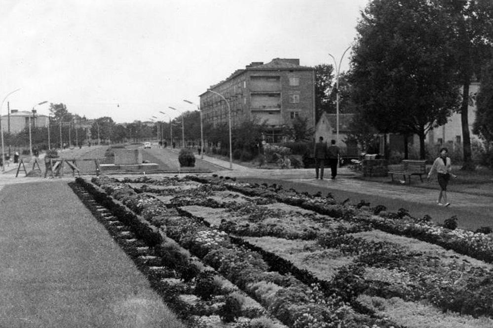 początek budowy pomnika Mickiewicza