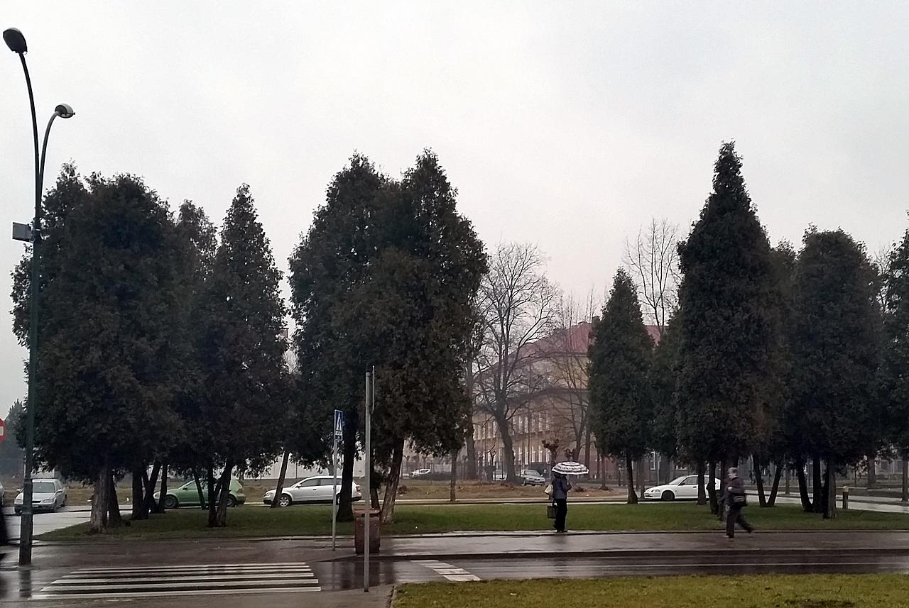 w tym miejscu być może stanie pomnik Piłsudskiego