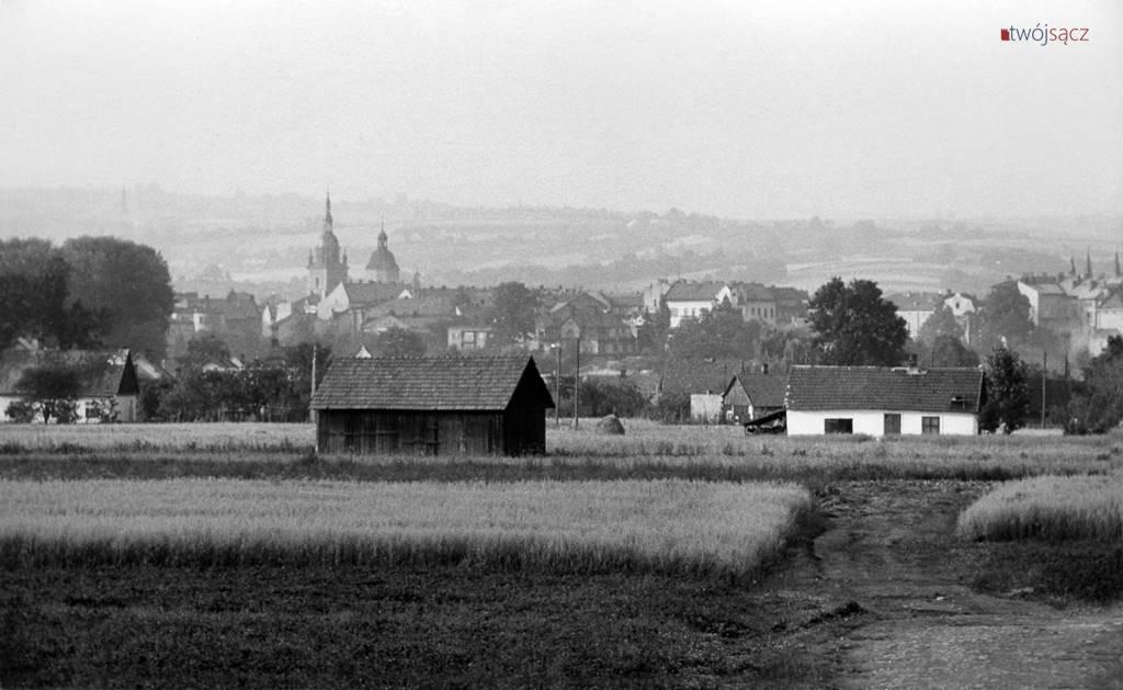 Nowy Sącz Wólki panorama 1966