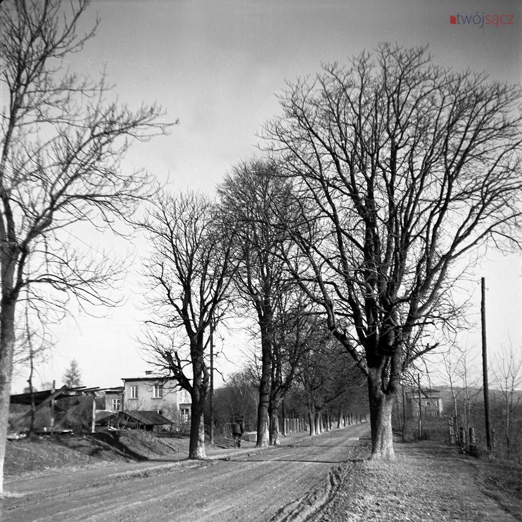 Nowy Sącz ulica Rejtana w latach 50