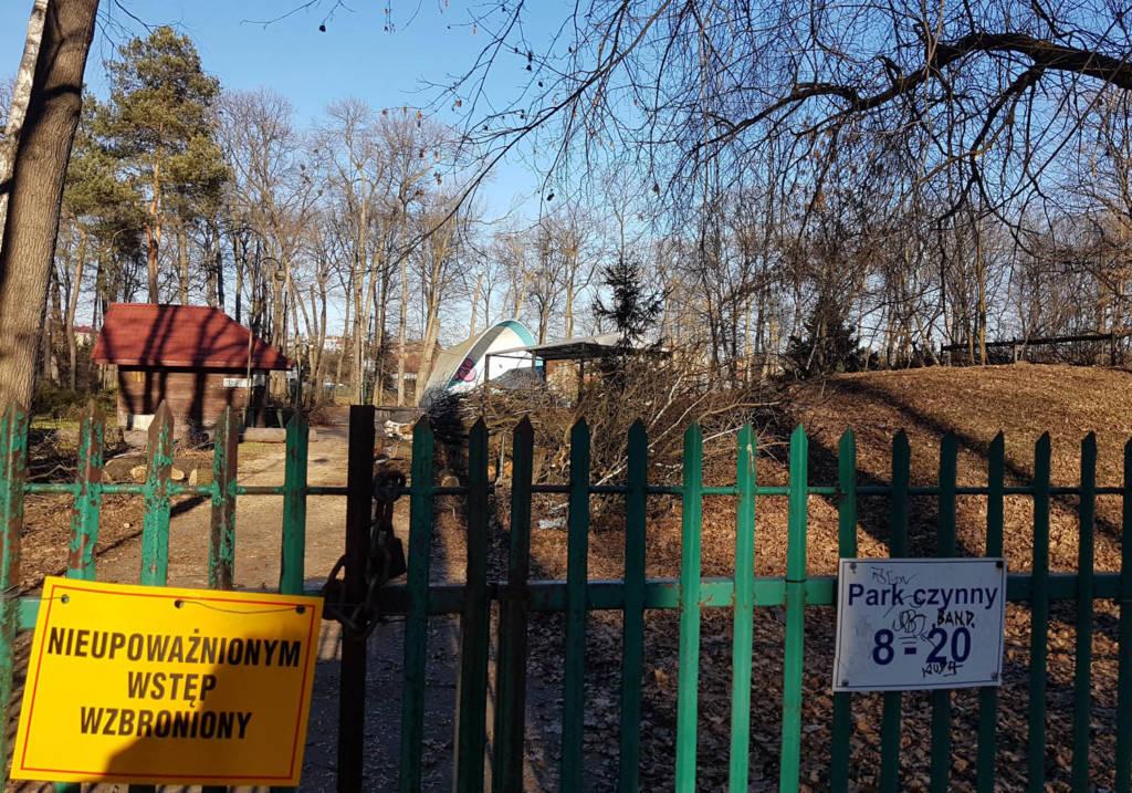 park strzelecki wycinka