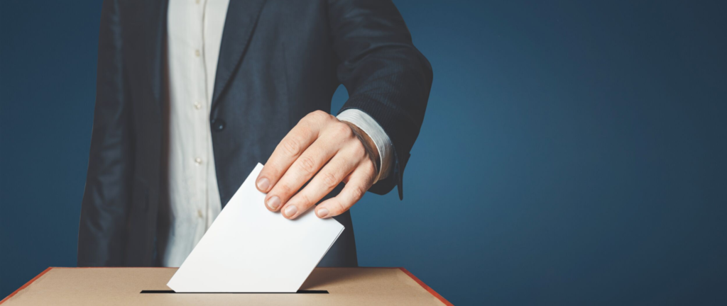 e-usługi wyborcze
